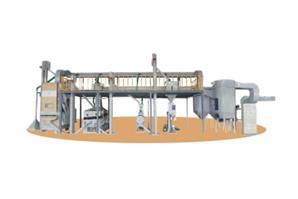 Seed Processing/Cleaning Plant with Platform